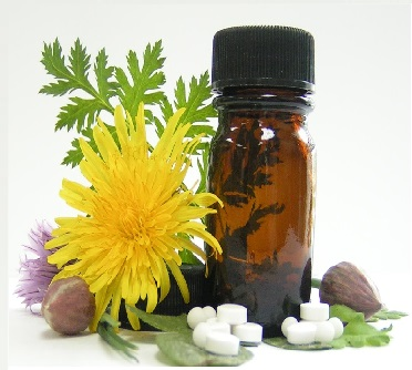 A general introduction to homeopathy with Lilias Drummond; a classical homeopath and registered Bach practitioner. Perhaps you have a health complaint and are wondering if a natural remedy could help, or you may just want to know more, this talk is for you.