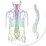 Come with your questions about your physical well-being and get an insight on how to look after your spine, neck, pelvis and body in general. Session includes spine screens and discounts on continuing treatment. A holistic approach to well-being by a local experienced Chiropractic practitioner. Free session. Please book your place at the library.