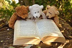 Drop off your teddy bear for a teddy bear's sleepover at St Thomas Library! Look out for facebook updates on how much fun they are having and safely pick them up again on Saturday 17 August from 9:00. What more could a bear wish for?